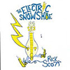 ELECTRIC SNOWSHOE